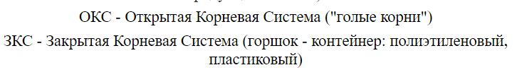 Сведения о саженцах Тимирязевской академии