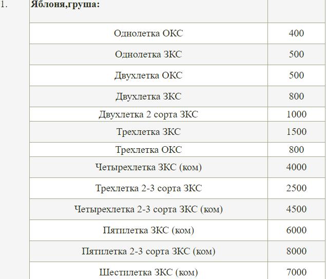 Саженцы деревьев Тимирязевской академии