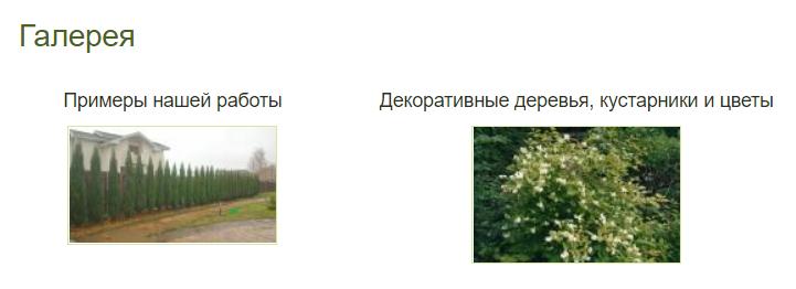 Примеры работ академии